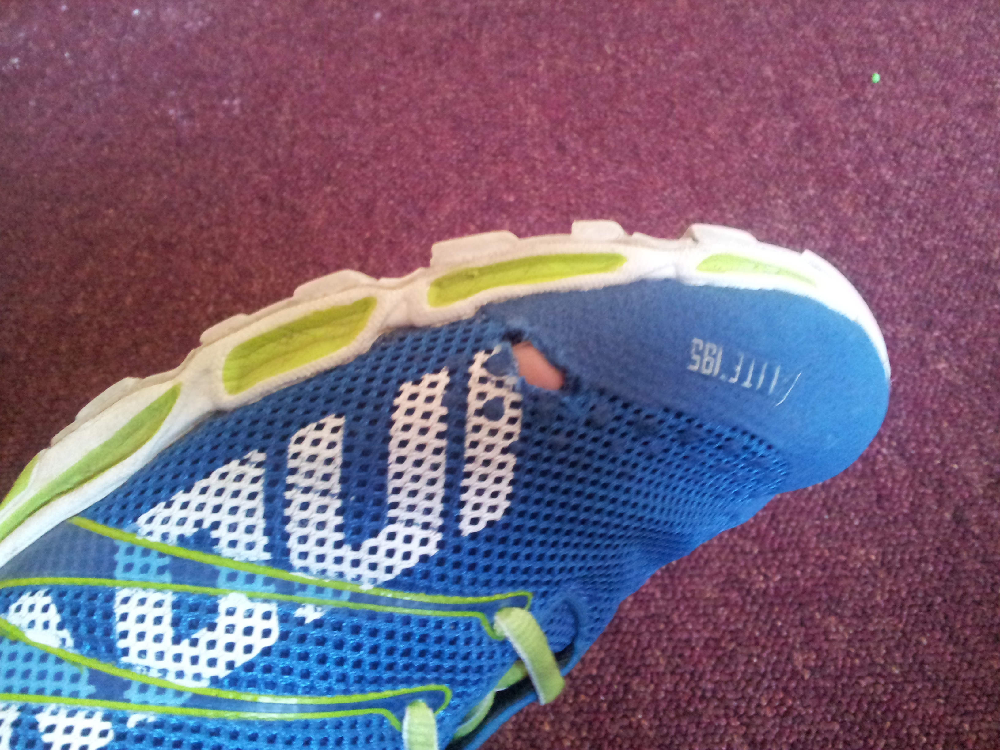 The Running Shoe Review